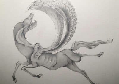 Pegasus Fossil