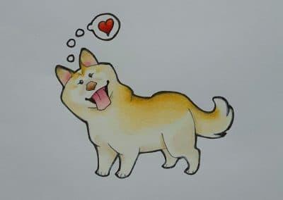 Shiba Love