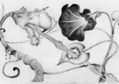 Plant Gore - Original